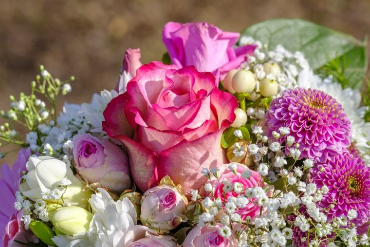 The Healing Power of Blooming Flowers