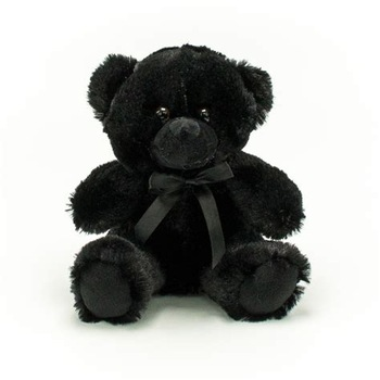 Black Teddy Bear