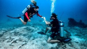 Love Proposal Under The Sea