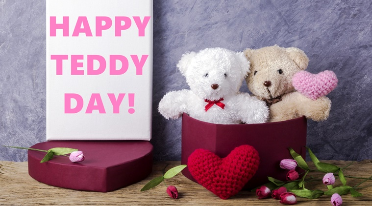 This Teddy Day, Get Different Colors of Teddies for Different Feelings