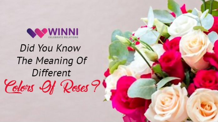 Did You Know The Meaning Of Different Colors Of Roses?