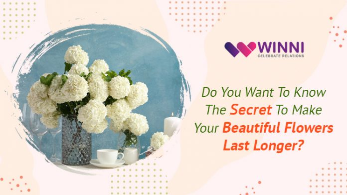 Do You Want To Know The Secret To Make Your Beautiful Flowers Last Longer?