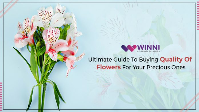 Ultimate Guide To Buying Quality Of Flowers For Your Precious Ones!!!