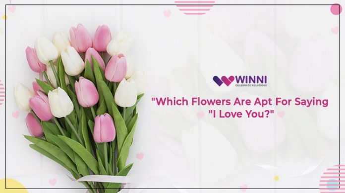 Which Flowers Are Apt For Saying